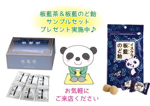 佐久市の漢方マスヤ薬局★板藍茶&板藍のど飴サンプルセットプレゼント実施中!